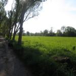 rangsdorf_03